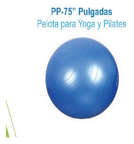 Pelota Gym Ball Pilates Yoga 65 Cm Azul Super Confort Pp65